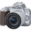 Canon 250D + 18-55 IS STM