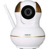 Evolveo Securix s internetovou kamerou