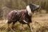 Obleček Hurtta Outdoors Torrent coat 80 cm třešňový