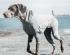 Oblečení pro psy Hurtta Body Warmer 55L šedý