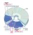 Disk Verbatim DVD+R DualLayer, 8,5GB, 8x, 5ks