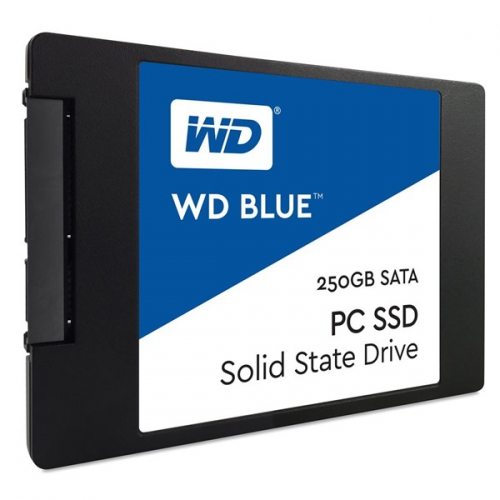 Western Digital Blue 250 GB