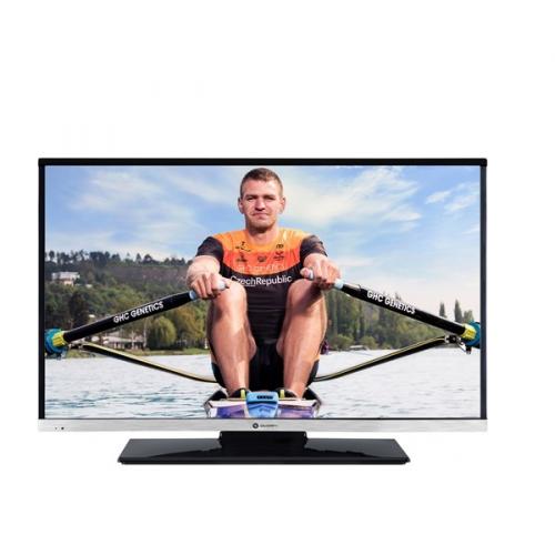 GoGEN TVH 24N484 STDVDC černá